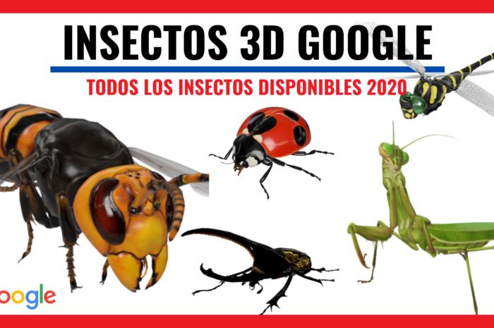 GOOGLE AÑADE INSECTOS EN 3D Y REALIDAD AUMENTADA EN SUS RESULTADOS DE BUSQUEDA. ESTOS SON LOS DISPONIBLE